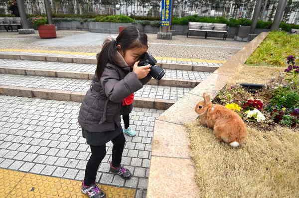 こどもカメラマン3.jpg