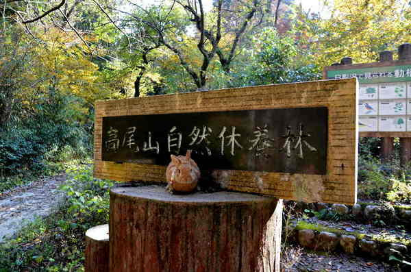 休養林.jpg