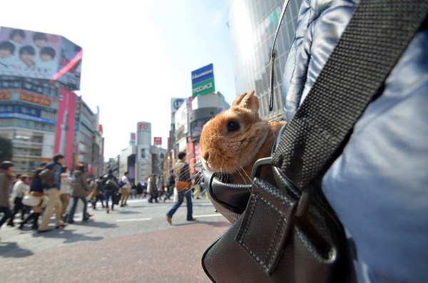 渋谷3.jpg