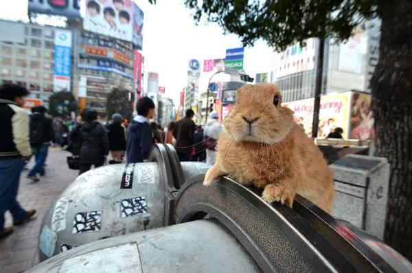 渋谷4.jpg