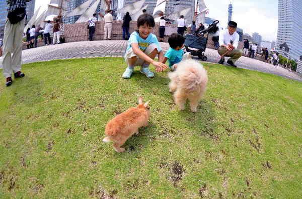 犬9.jpg